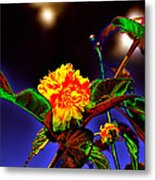 Yellow Queen on the morning dream Metal Print