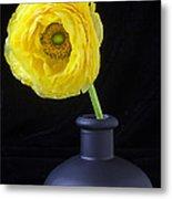 Yellow Ranunculus In Black Vase Metal Print