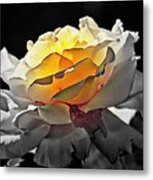 Yellow Rose Series - ...but Soul Is Alive Metal Print