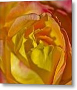 Yellow Rose Up Close Metal Print