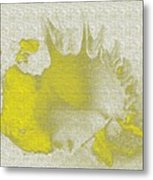 Yellow Shell Metal Print
