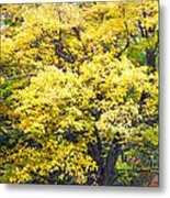 Yellow Tree Metal Print