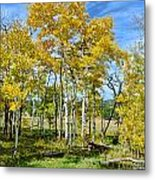 Yellow Tree Metal Print by Keith Ducker