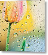 Yellow Tulip Reflecting In Water Drops Metal Print