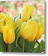 Yellow Tulips In The Spring Garden Metal Print