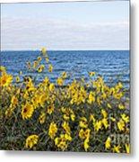 Yellow Wind Metal Print