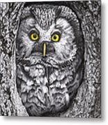 Yelloweyes - The Owl Edition Metal Print