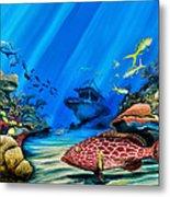 Yellowfin Grouper Wreck Metal Print