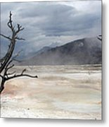 Yellowstone 21 Metal Print