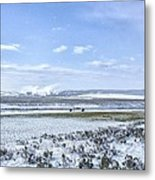 Yellowstone Landscape In Spring Metal Print