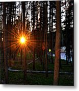 Yellowstone - Sunset Through The Trees Metal Print