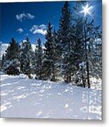 Yellowstone Sunshine Metal Print