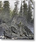Yellowstone - The Rock Tree Metal Print