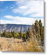 Yellowstone View Metal Print by Cindy Singleton