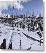Yellowstone Winter Metal Print by David Yack