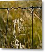 Yesterdays Web Metal Print