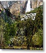 Yosemite Apple Orchard  Metal Print