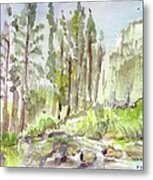 Yosemite Camp Metal Print