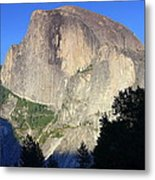 Yosemite Half Dome With Cottonwood Trees Metal Print