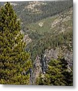 Yosemite Mountain High Metal Print