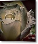 You Light Up My Life Metal Print by Patricia Trudell