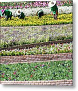 You Reap What You Sow Metal Print