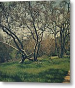 You Smiled And I Knew Metal Print by Laurie Search