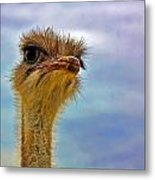 You Talkin To Me Metal Print