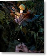 Young Lonely Mushroom Metal Print