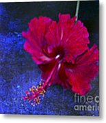 Young Passion... Metal Print