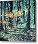 Youngster Metal Print by Hannes Cmarits