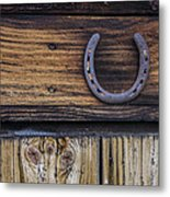 Your Lucky Horseshoe Metal Print