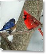 Your Nest Or Mine Metal Print