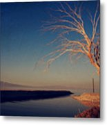 Your One And Only Metal Print by Laurie Search