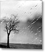 Your Tears I Root Metal Print