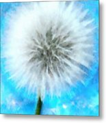 Youthful Wish Metal Print