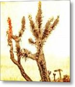 Yucca At Ave. J And 187 St. Metal Print