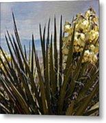 Yucca Blooms Metal Print