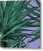 Yucca Tops Metal Print