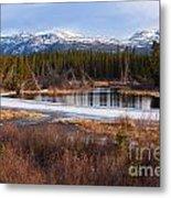 Yukon Taiga Wetland Marsh Spring Thaw Canada Metal Print