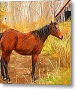 Yuma- Stunning Horse In Autumn Metal Print