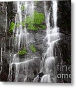 Yungas Waterfall Detail Metal Print