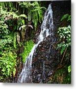Yungas Waterfall Metal Print