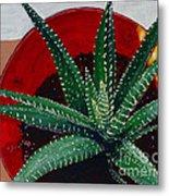 Zebra Cactus In Red Glass Metal Print