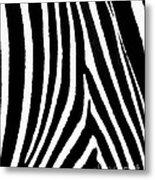 Zebra Hide Metal Print