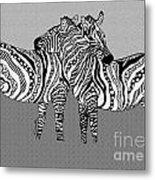 Zebra Love 12 Metal Print