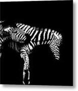 Zebra Stripes Metal Print