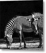 Zebra Unique Patterns Metal Print