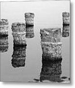 Zed Black And White Metal Print