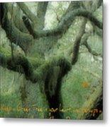 Zen Forest Metal Print